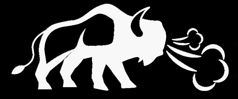 Buffalo Pressure Washing